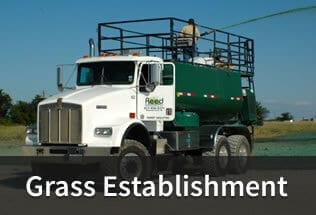 grass-establishment