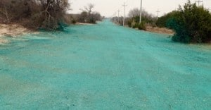 fresh Hydromulch near Dallas